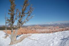 Bryce Canyon tours in the winter