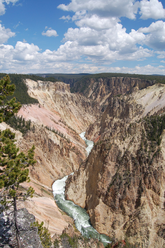 Yellowstone tour - Grand Canyon of the Yellowstone