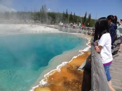 West Thumb Geyser Basin, on the shores of Yellowstone Lake, on a Yellowstone tour.