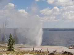 A geyser erupts on the shores of Yellowstone Lake, at West Thumb Geyser Basin, seen on a Yellowstone tour from West Yellowstone.
