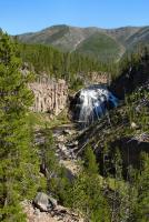 Yellowstone tours - Gibbon Falls.